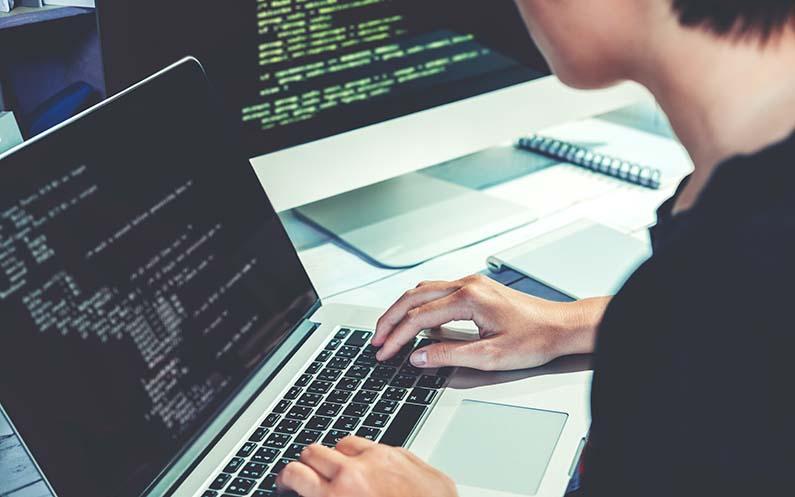 برنامهنویس و توسعهدهنده وب