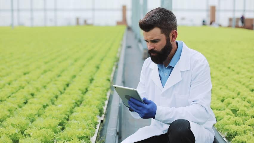 مهندس کشاورزی و دامپروری